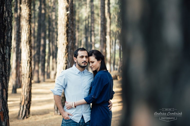 sloane pine forest e-shoot (11)