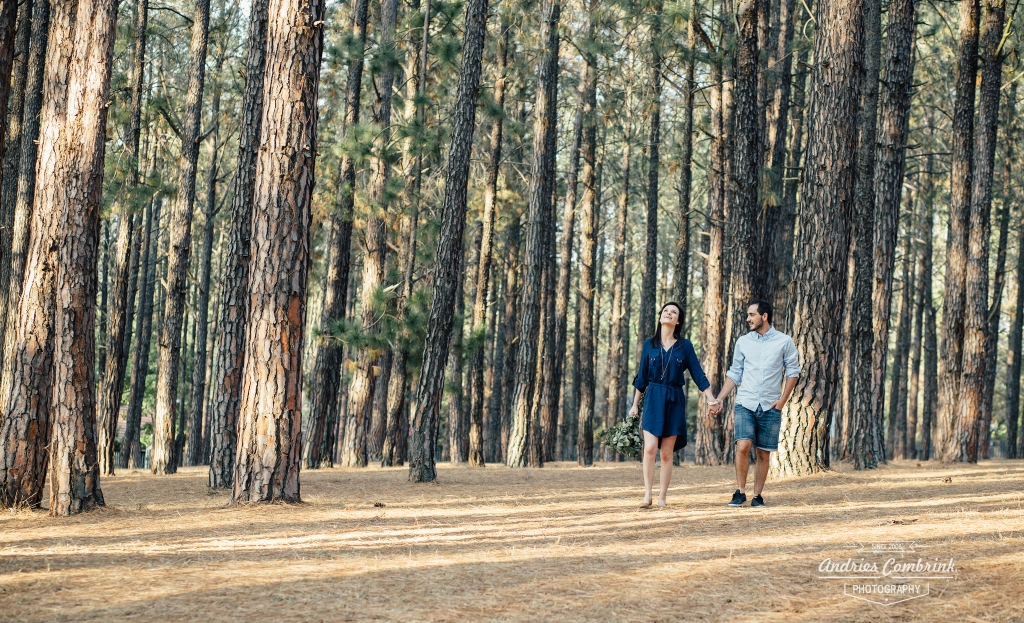 sloane pine forest e-shoot (18)