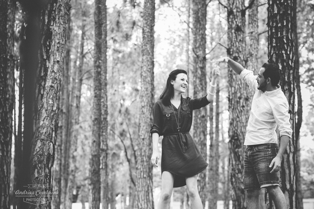 sloane pine forest e-shoot (2)