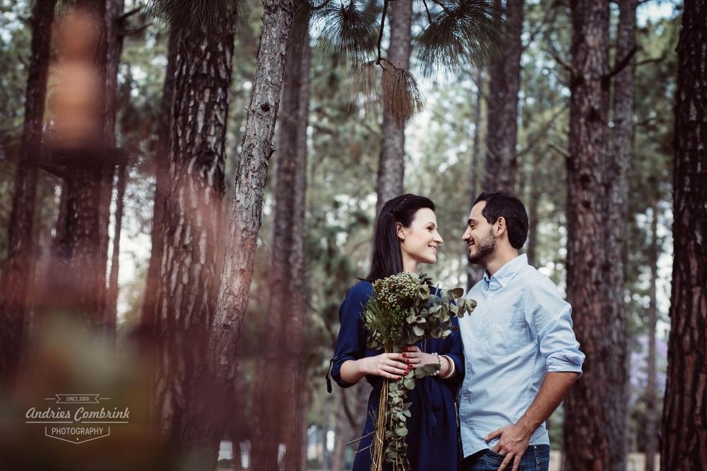 sloane pine forest e-shoot (5)