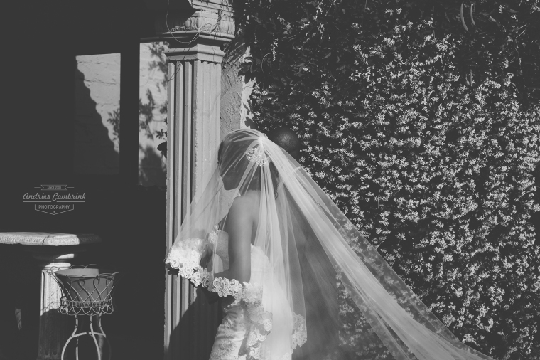 oakfield farm bride+veil