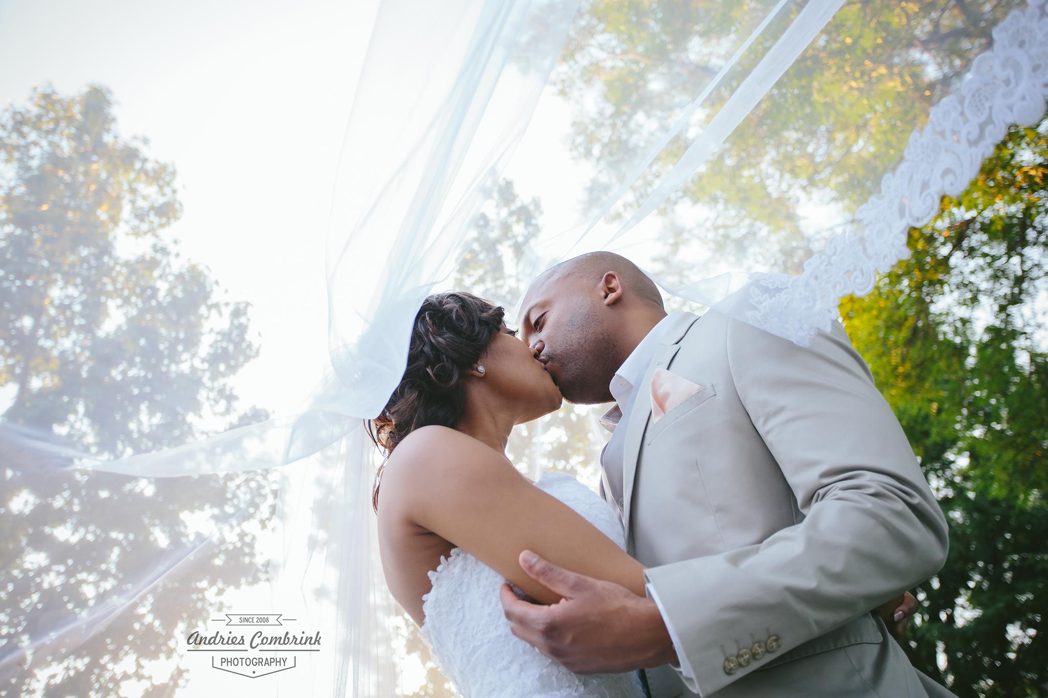 oakfield farm couple+veil